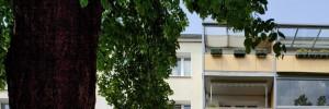 Friedlanderstraße